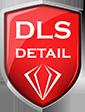 DLS detail -